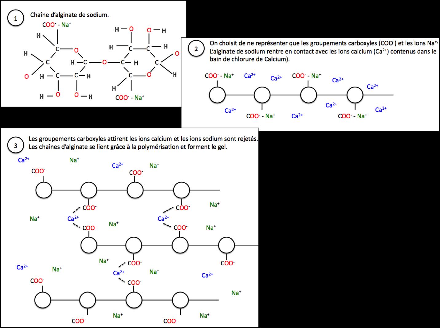 G sph rification - La cuisine moleculaire tpe ...